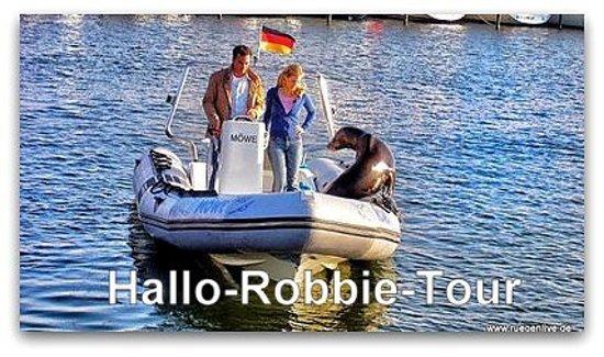 """Ganzjährig buchbar ist die """"Hallo-Robbie-Tour. Sie startet um 9:45 Uhr in Glowe, Rügen Radio 6. Die Abholung ist möglich. Der Preis pro Person beträgt 50 Euro. Maximal 7 Personen können an der Kleinbustour teilnehmen. Anmeldung unter www.ruegentouren.de"""