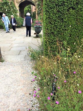 5.  Sissinghurst Castle Gardens, Sissinghurst, Kent