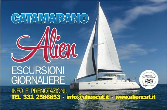 Catamarano Alien Boat Tours