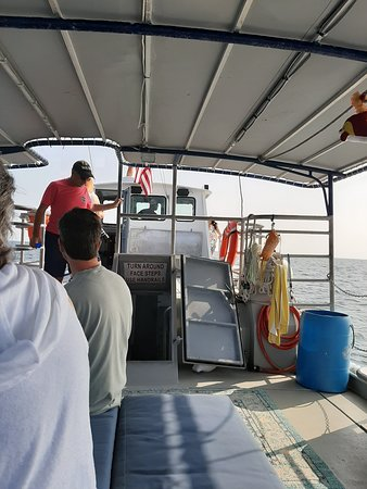Best whale/dolphin boat ride