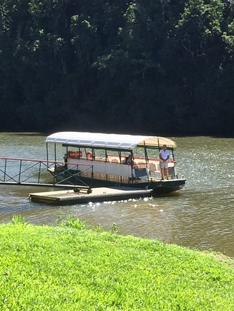 Kuranda Riverboat Sightseeing Cruise: This was our gentle ride