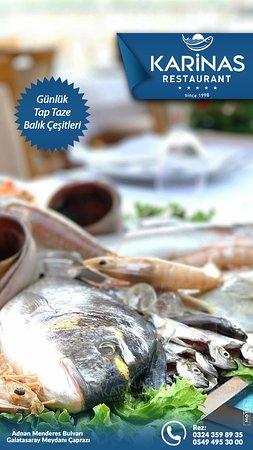Günlük taptaze balık çeşitleri enfes lezzetler...