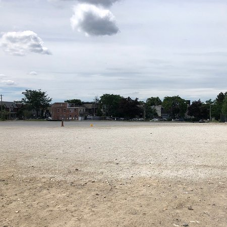 Bloordale Beach