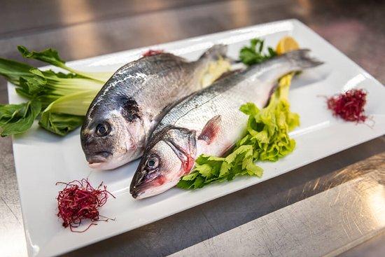 ryby nemůžou na našem jídelním lístku chybět