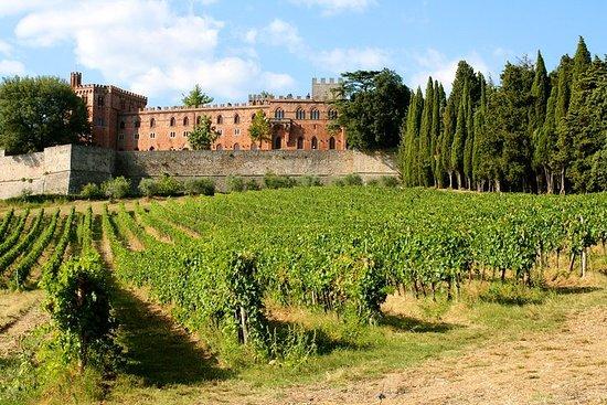 Livorno Port Shore Excursion: Siena...