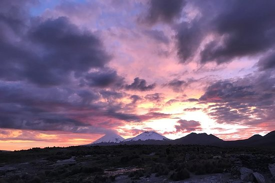 Sajama / 2 Day Tour / Private Service + English Speaking Guide