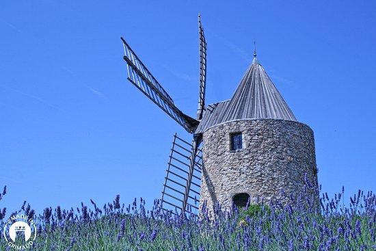St Roch's Mill