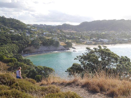 On trail at Te Pare Historic Reserve