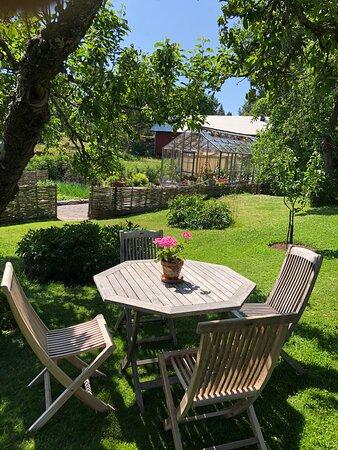 Fikabord under äppelträden på trädgårdscafét