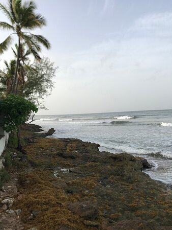 Enterprise, Барбадос: Barbados surf lessons at Ride The Tide Surf School, Freight's Bay.