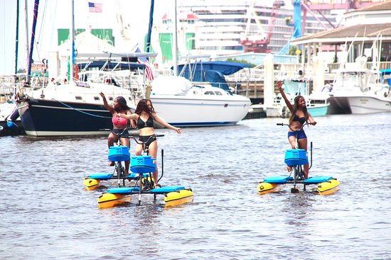 Apeaceful andEco-friendly way to stroll along the Amelia River with friends and family.