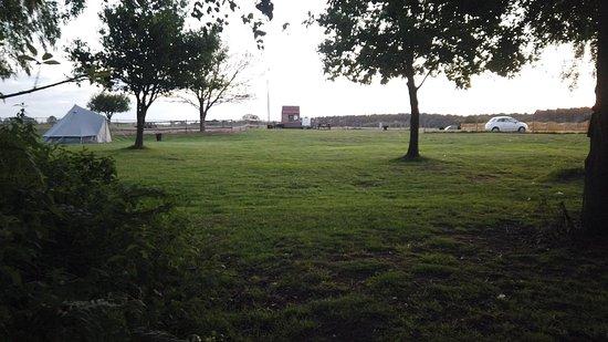 Sunflower Park