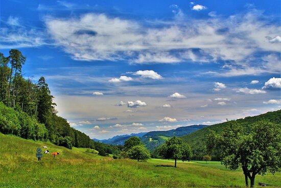 Canton of Jura, سويسرا: Giura Svizzero , a pochi chilometri la Francia..