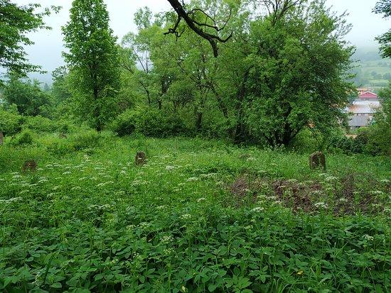 Baligrod, Poland: gdzieś tam jest cmentarz
