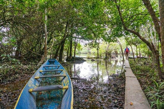 La Macarena, Colombia: Disfruta de la naturaleza  y los bellos paisajes que este destino te ofrece,