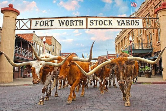 Private Fort Worth Highlights Tour