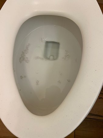 """Horrible stay on our honeymoon.  reserved the """"Wellness Room"""" to ensure an extra clean room due to Covid-19.  This is what you get folks!  Moldin the toilet!  This room had not been touched for months!! no cleaning at all!  Entire bathroom was filthy!  WE CLEAN IT OURSELVES!!"""