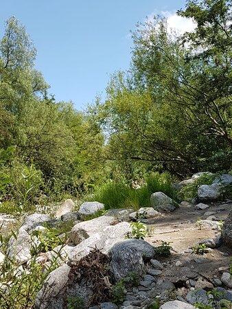 Arroyo Piedras Blancas: Villa de Merlo, Provincia de San Luis- Argentina 2020.