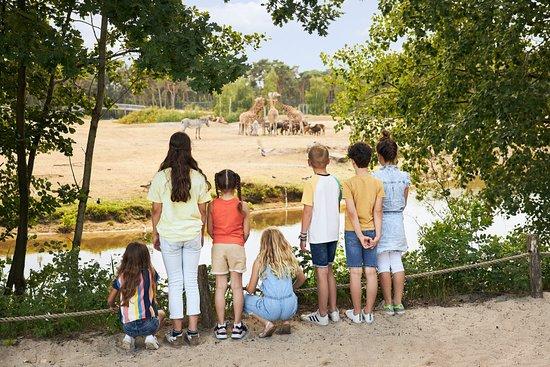 Kinderen | Safaripark Beekse Bergen