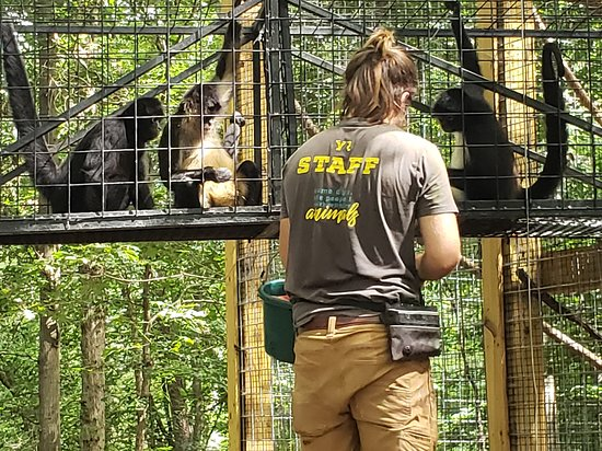 Knowledgeable personnel at Yellow River Wildlife Sanctuary.