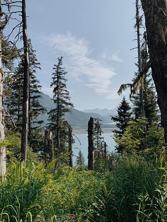 One of the amazing views from our Glacier Trail hike!