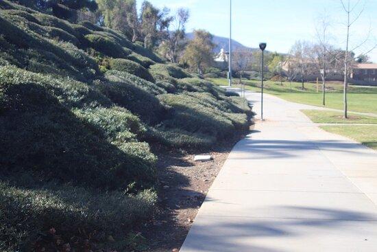 Walker, Kalifornia: We can also walk here