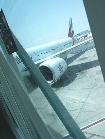 Emirates Flight EK 0785.