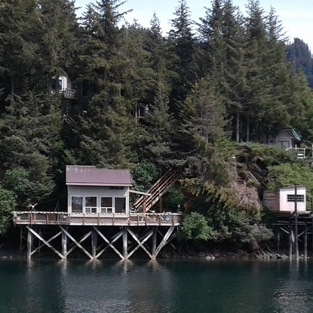 View of the Seldovia bed and breakfast (cabin).