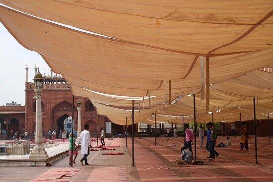 ניו דלהי, הודו: Nuova Delhi: Jame Masjid