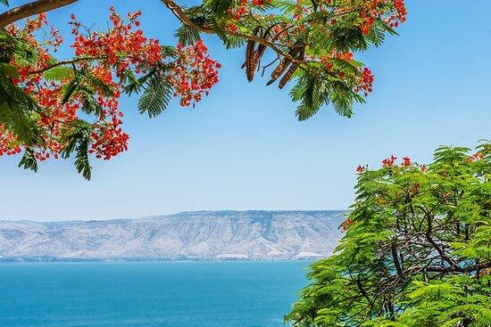 Nazareth, Tiberias and the Sea of...