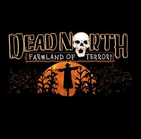 Dead North Vermont