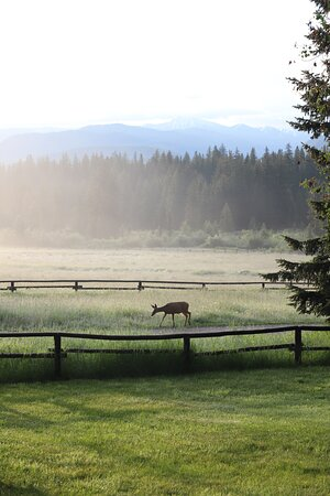 Perfect Place to Stay When Exploring Grand Teton National Park