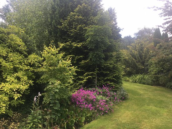 Goltho, UK: Pretty garden on a warm summers day.