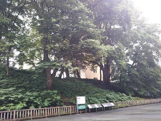 Yamagata Castle Sannomaru Mound