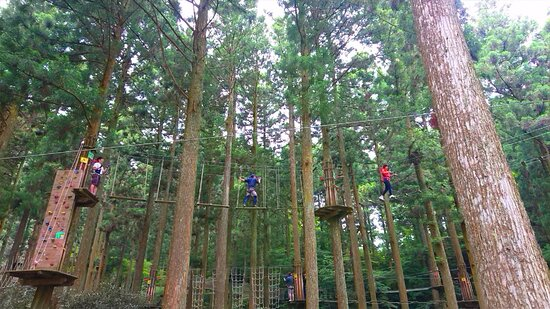 Forest Adventure Itoshima