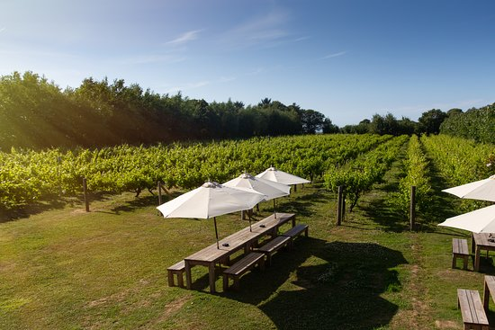 La Mare Wine Estate & The Vineyard Restaurant