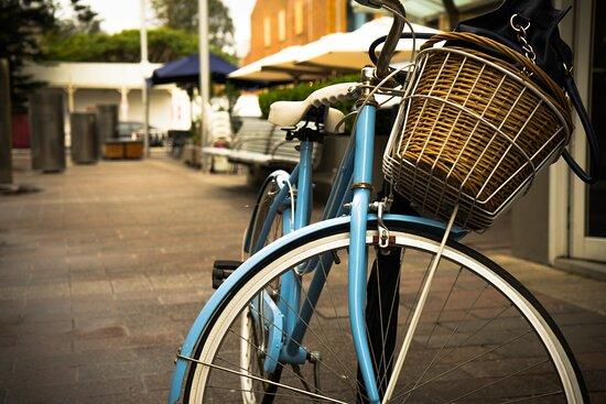 Phoenix Bike Rentals