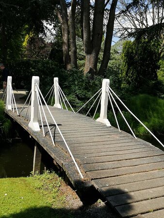 white bridges