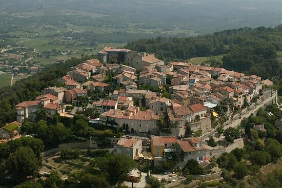 Heldags VIP Village Tour of Provence