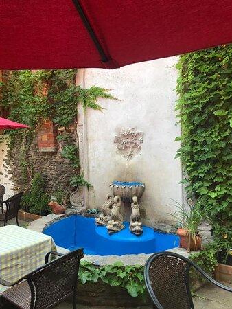 Belleville's best kept secret, Paulo's and Dinkel's garden courtyard patio!