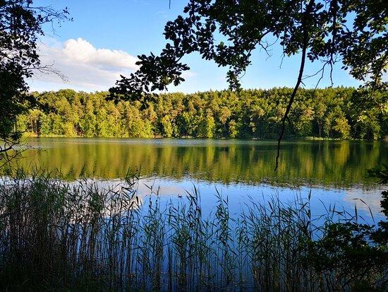 Lagow lake