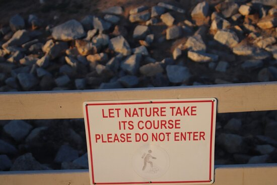 Let nature take its course