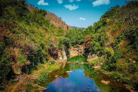 Vizag to Nagpur Tribal Communities & Tiger Safari