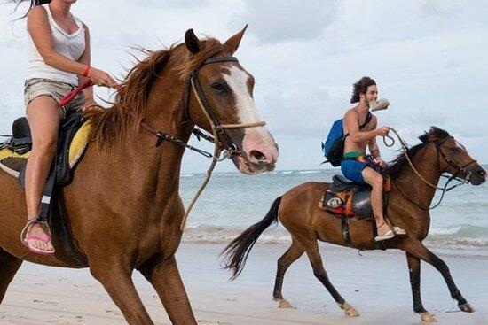 Horseback Riding Punta Cana 2 hours tours