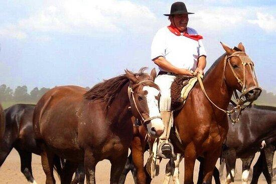 Gaucho Day Tour Santa Susana Estancia...