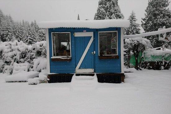 Colonia Suiza Photo
