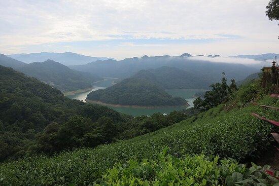 台北坪林与大象山一日游