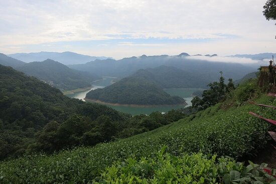 1-tägige Pinglin & Elephant Mountain Tour ab Taipei