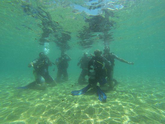 Try Scuba! Dive with us!