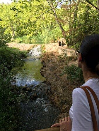 Torrelles de Foix – fotografia